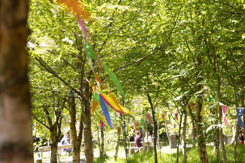 Flags in Diseart gardedn