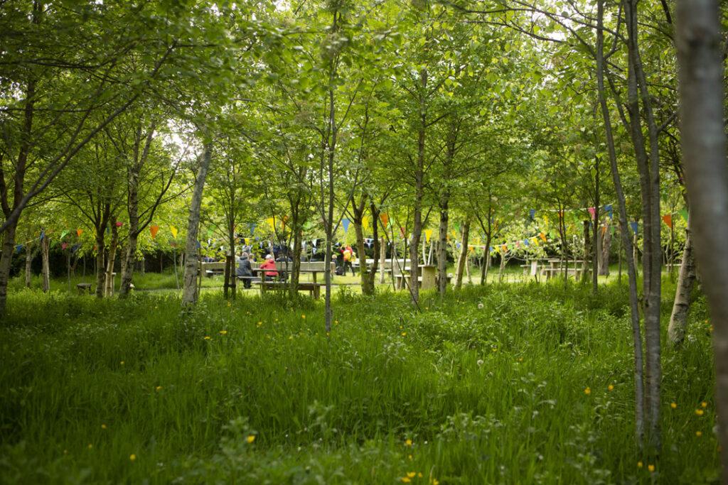 Family tree Garden An Díseart